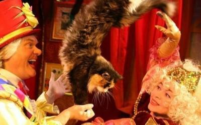«Защитник счастья» в Театре кошек Куклачева, или «Пушистое» воскресенье